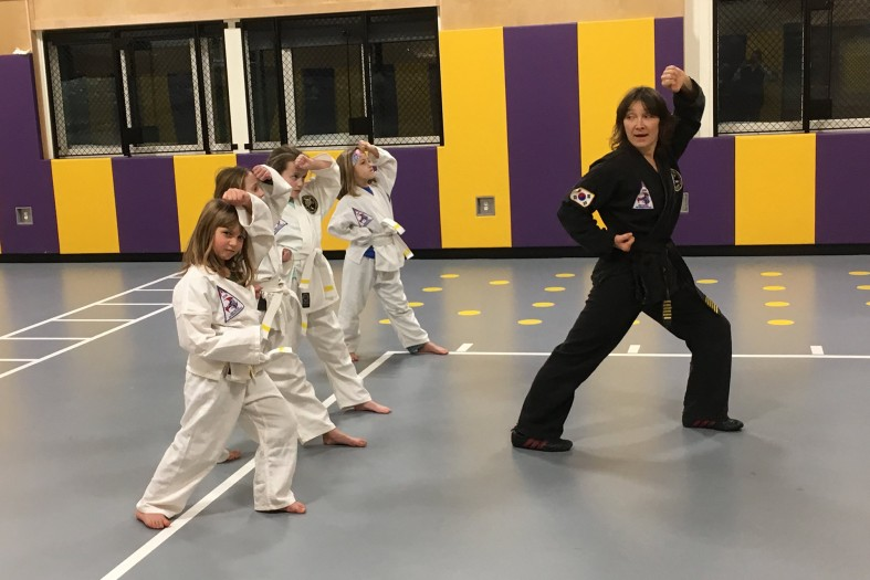 Tae Kwon Do – Forest Spirit Martial Arts & Qigong